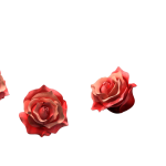 13_extra_roses_bunch_phantomscurse.png thumbnail