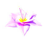 46_extras_flower_open_staxx_250k.png thumbnail