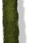 08_extra_hedge_scudamore.png thumbnail
