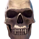 108_extra_head_front_transparent_halloween.png thumbnail
