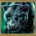 06_symbol_panther_medium_warlords.png thumbnail