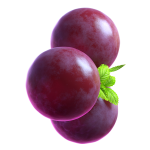 02_extra_Grape_01_booster.png thumbnail