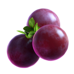 03_extra_Grape_02_booster.png thumbnail