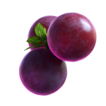 05_extra_Grape_04_booster.png thumbnail