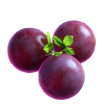 06_extra_Grape_05_booster.png thumbnail