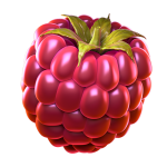 07_extraraspberry1_booster.png thumbnail