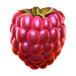 09_extraraspberry3_booster.png thumbnail