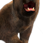 10_character_bear_jungle_smashhitbonus.png thumbnail